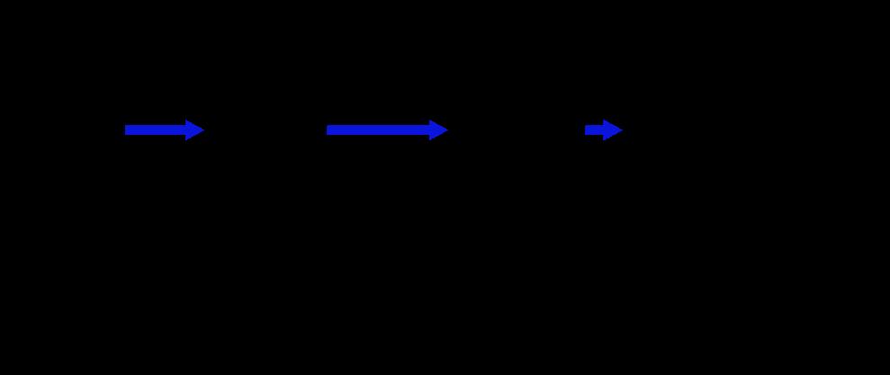 startle reflex connections