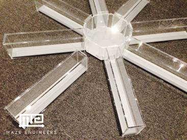 Radial Arm Maze - Removable Model