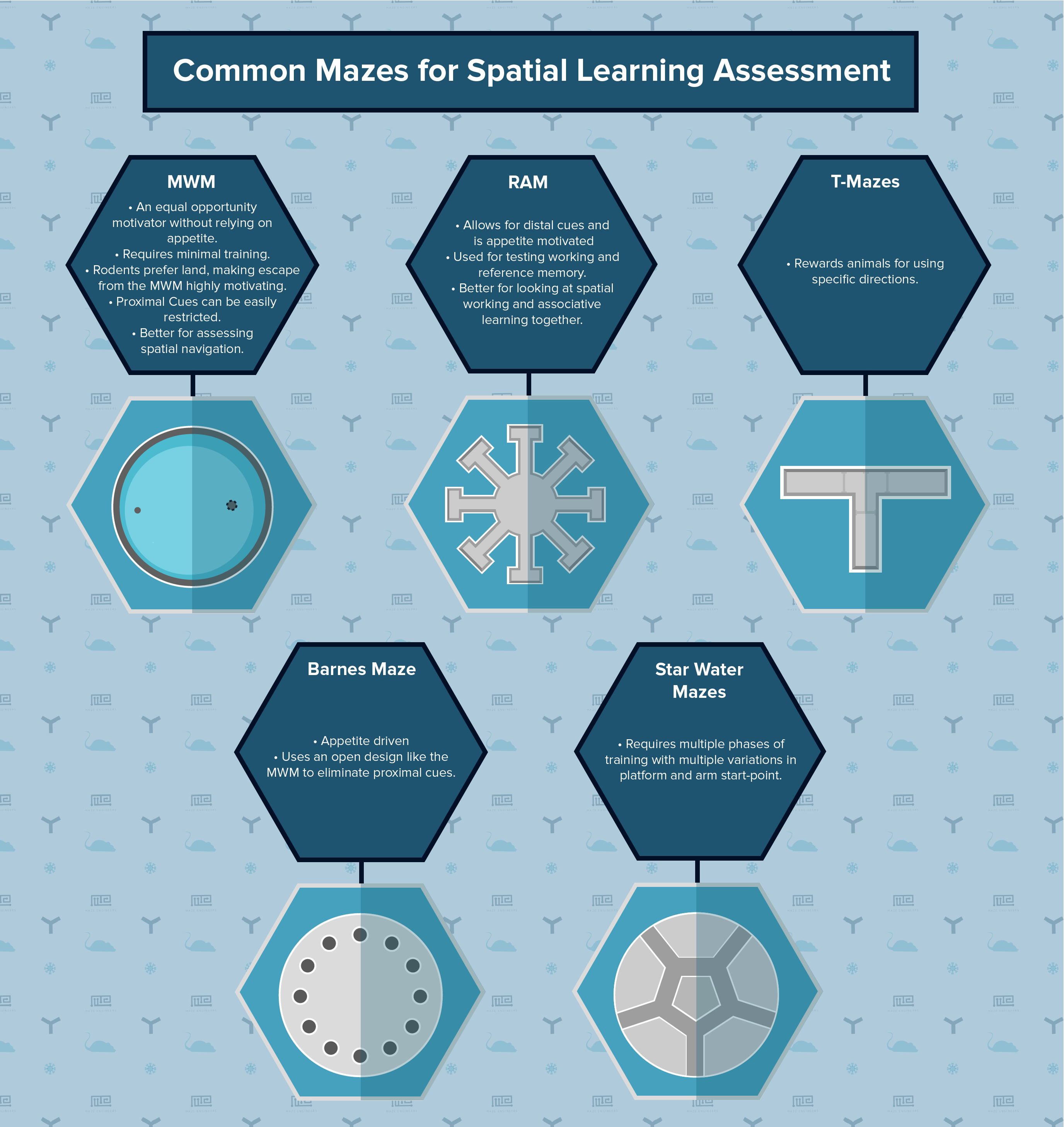 common mazes used in spatial learning