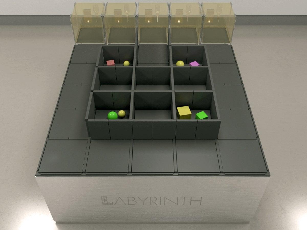 Maze Engineers Novel Object Assay