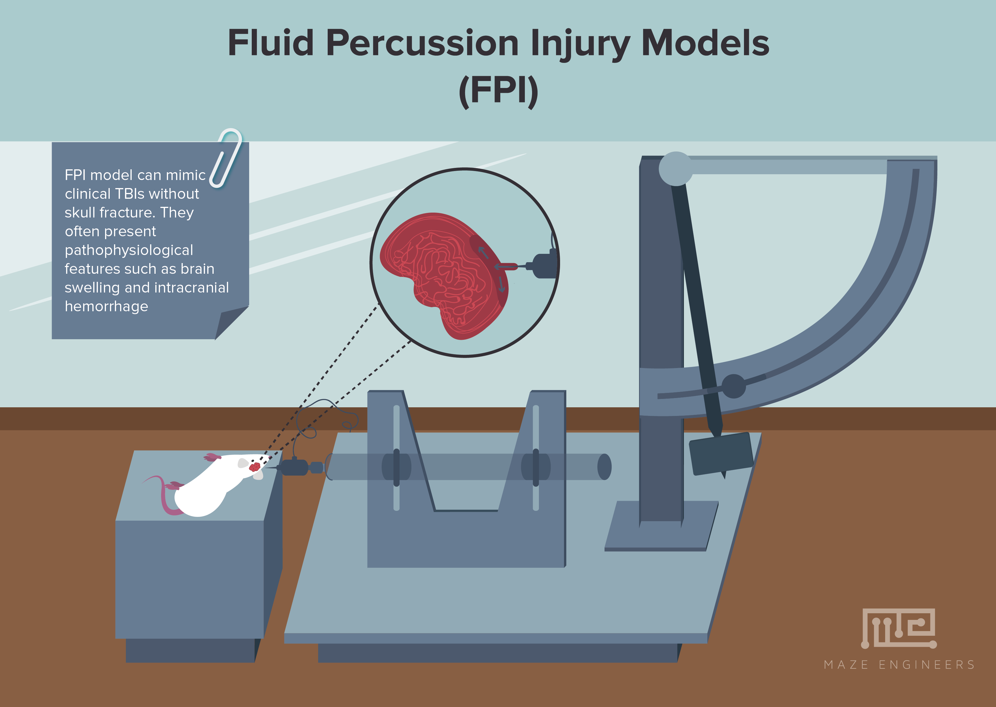 photo of Fluid percussion injury