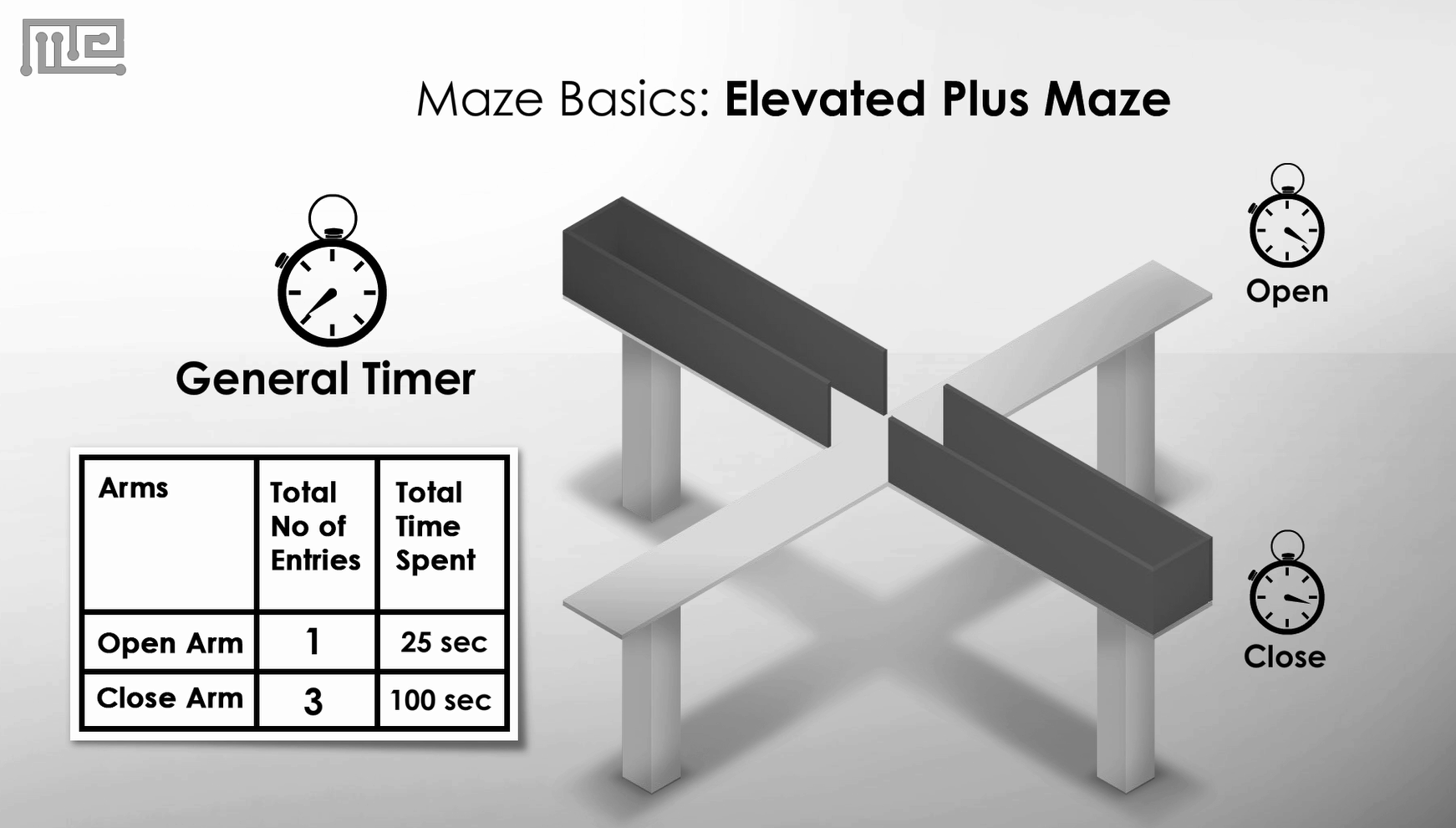 Elevated Maze