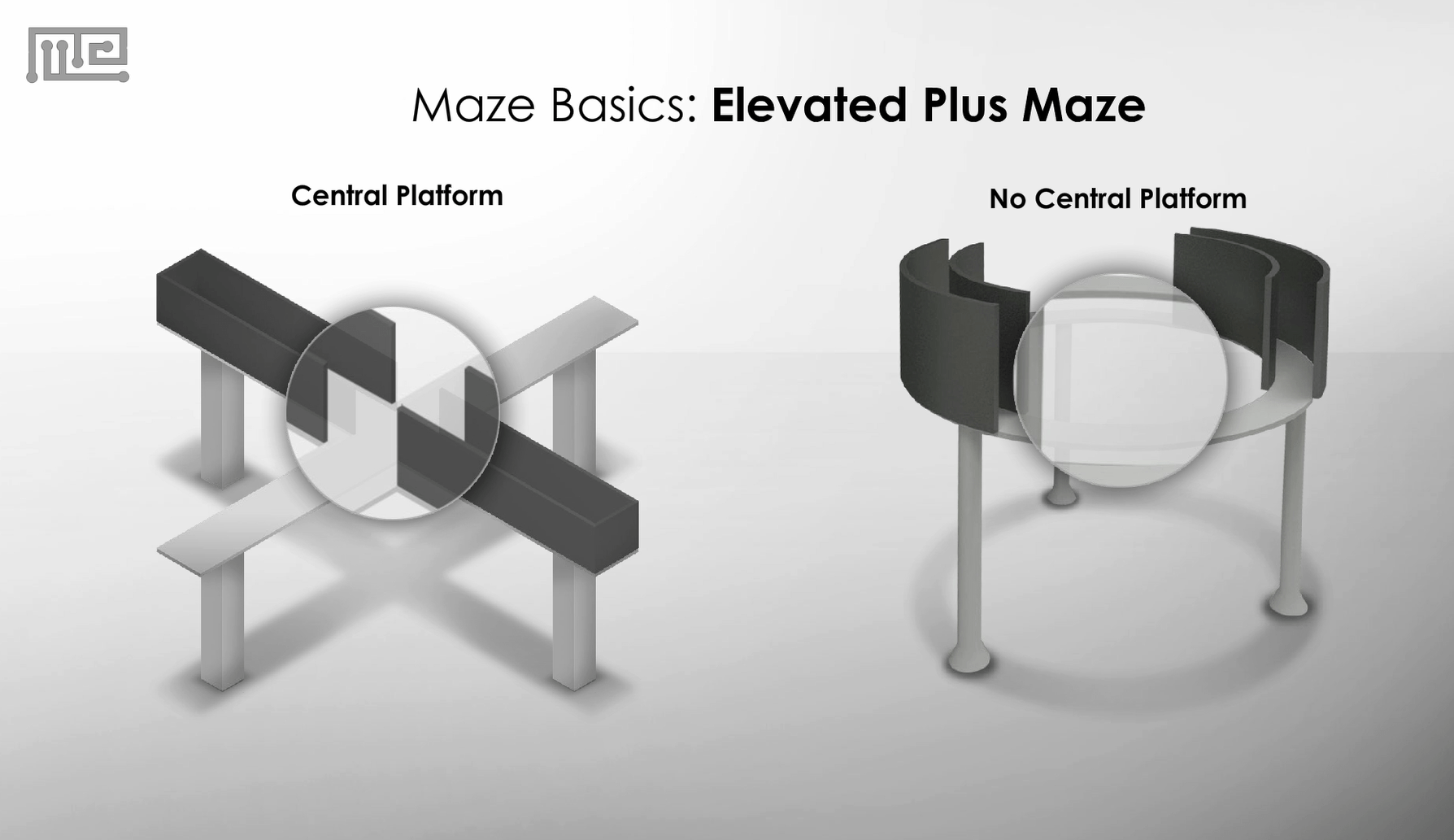 Elevated Plus Maze Apparatus and zero maze 2