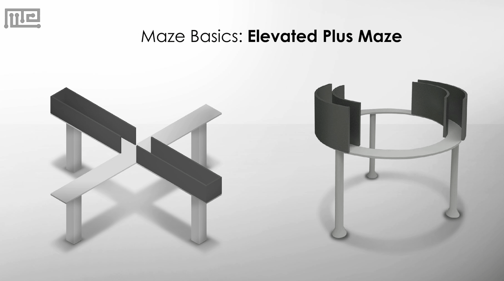 Elevated Plus Maze Apparatus and zero maze
