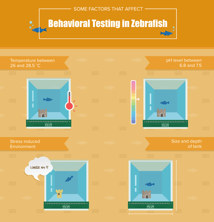 Zebrafish behavior testing