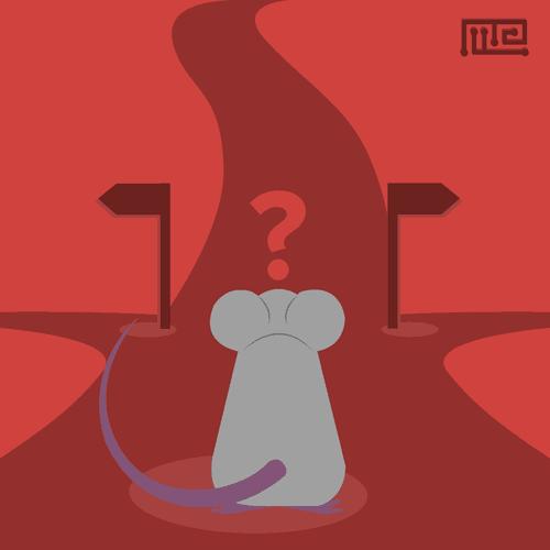 Modeling Impulsive Behavior In Mice cover photo