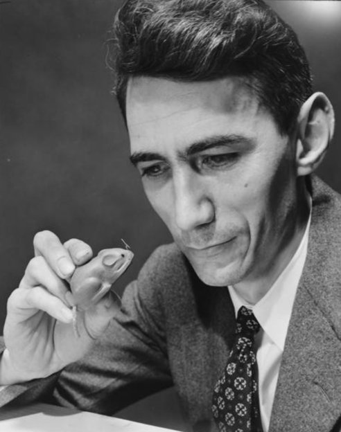Claude Shannon and mouse in history of mazes
