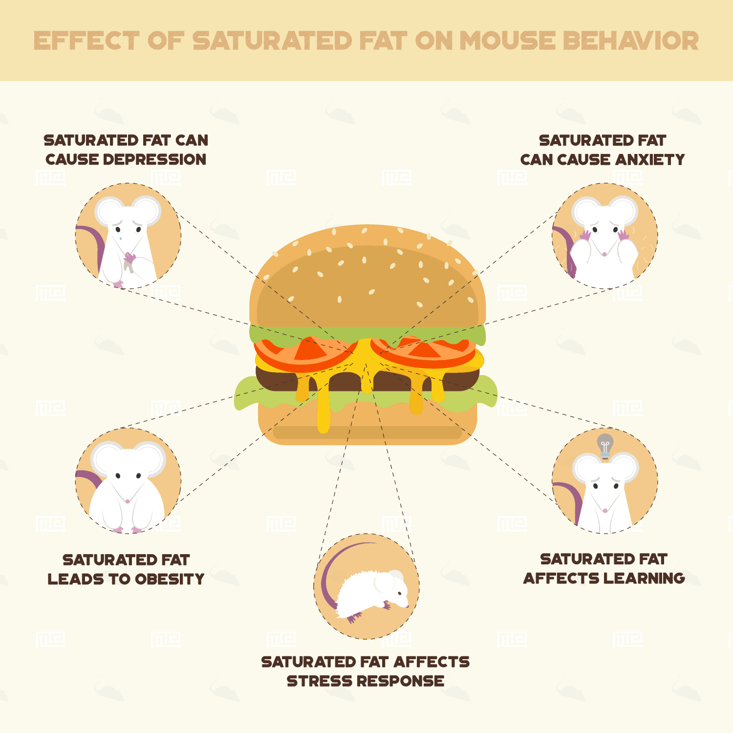 Effects of Saturated fat on Mouse Behavior