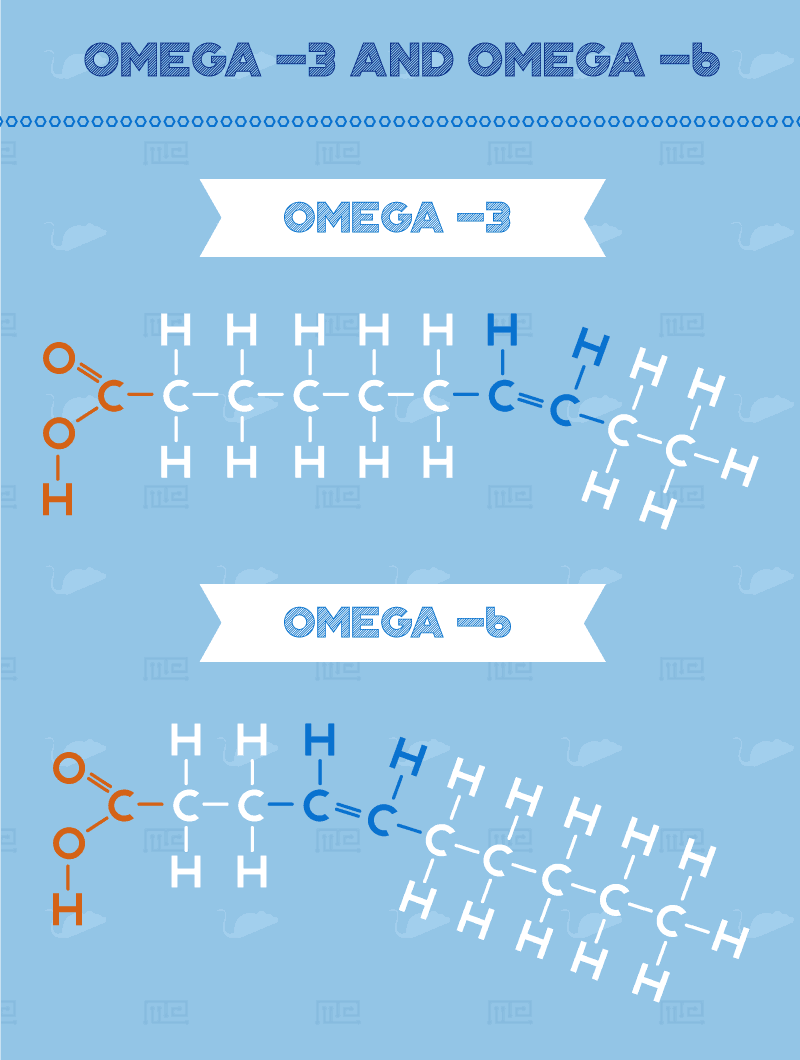 effect of fish oil on mouse behavior Omega--3-and-Omega--6