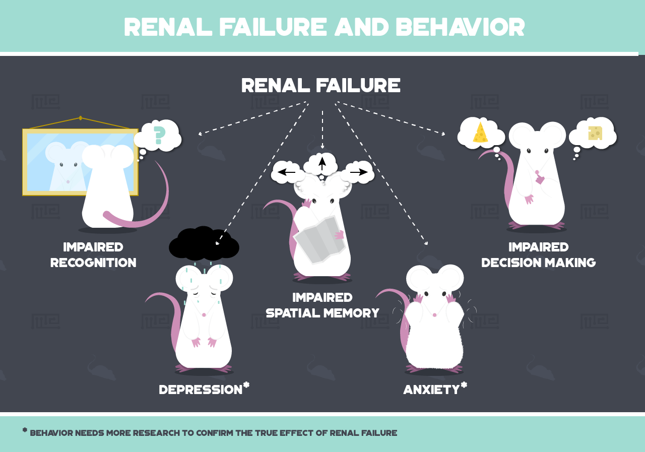 effects of renal failure on mouse behavior