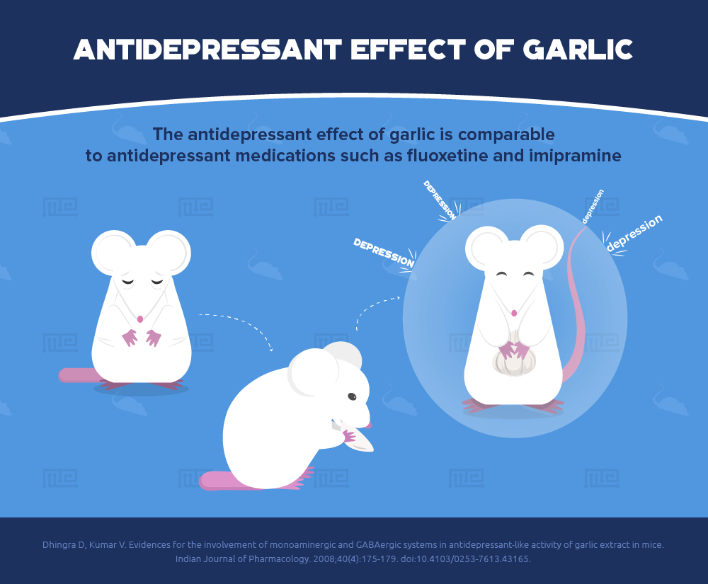 garlic antioxidant antidepressant effect