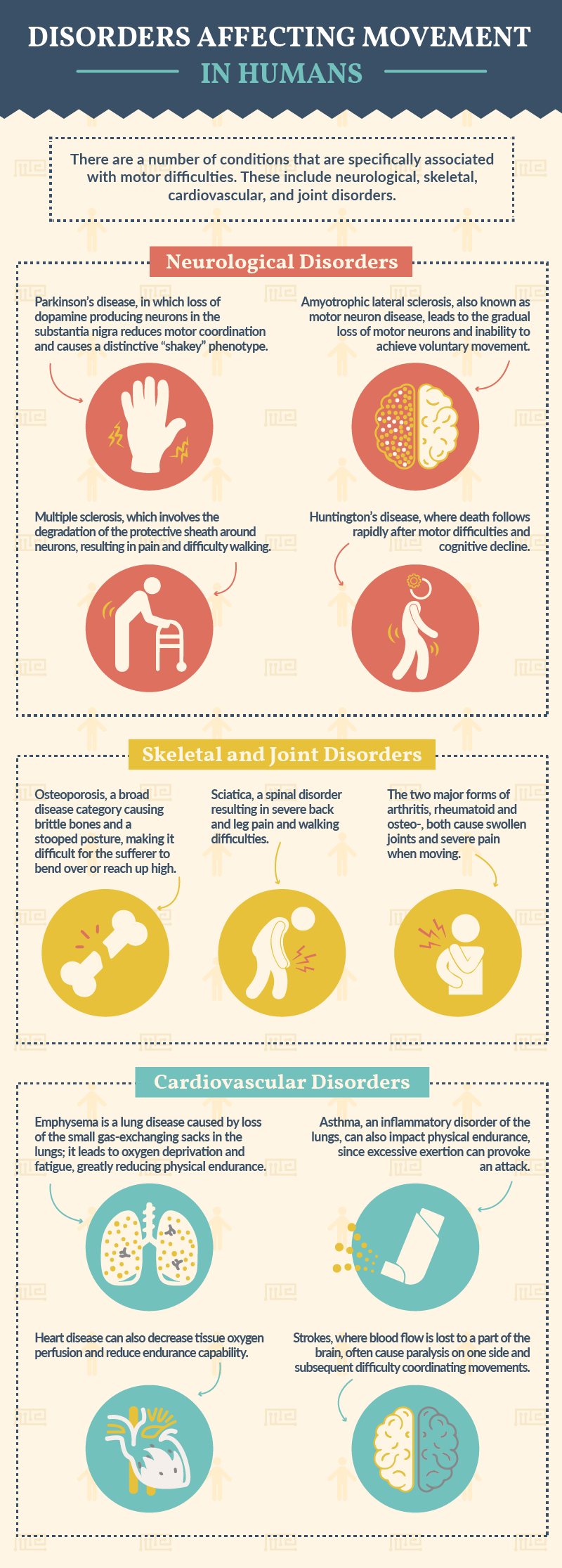 disorders affecting movement in humans