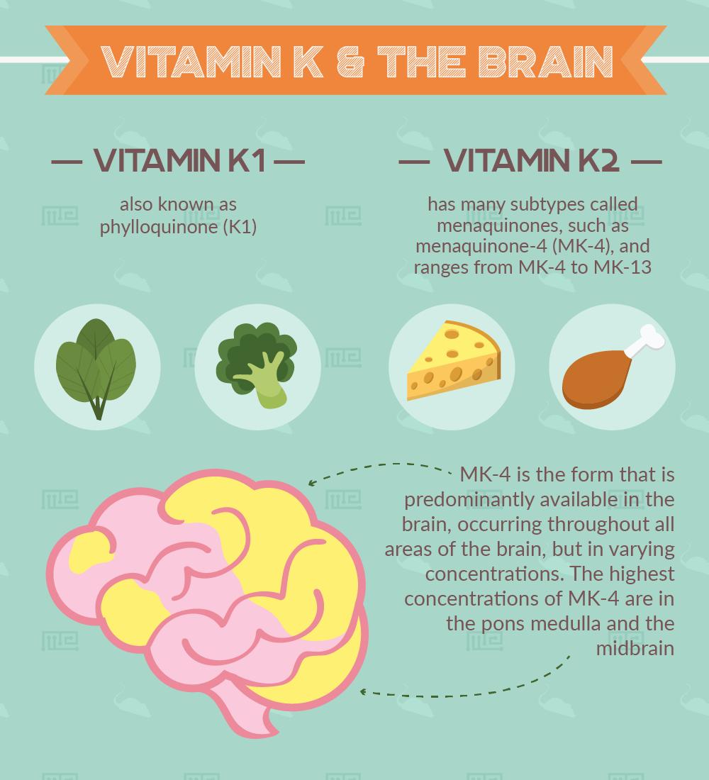 vitamin k cognition