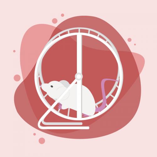 active behaviors mouse ethogram