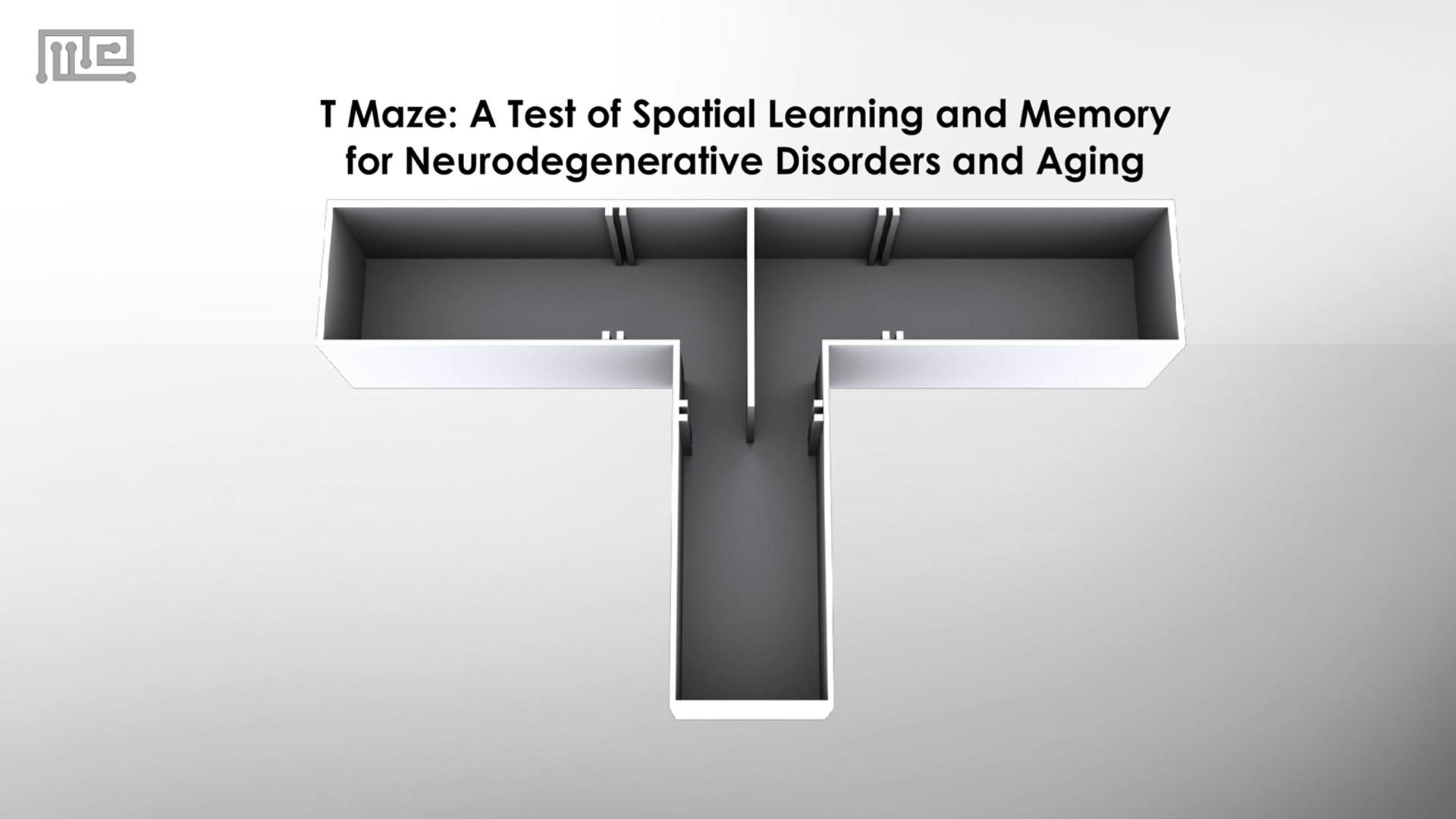 t-maze test comparison image