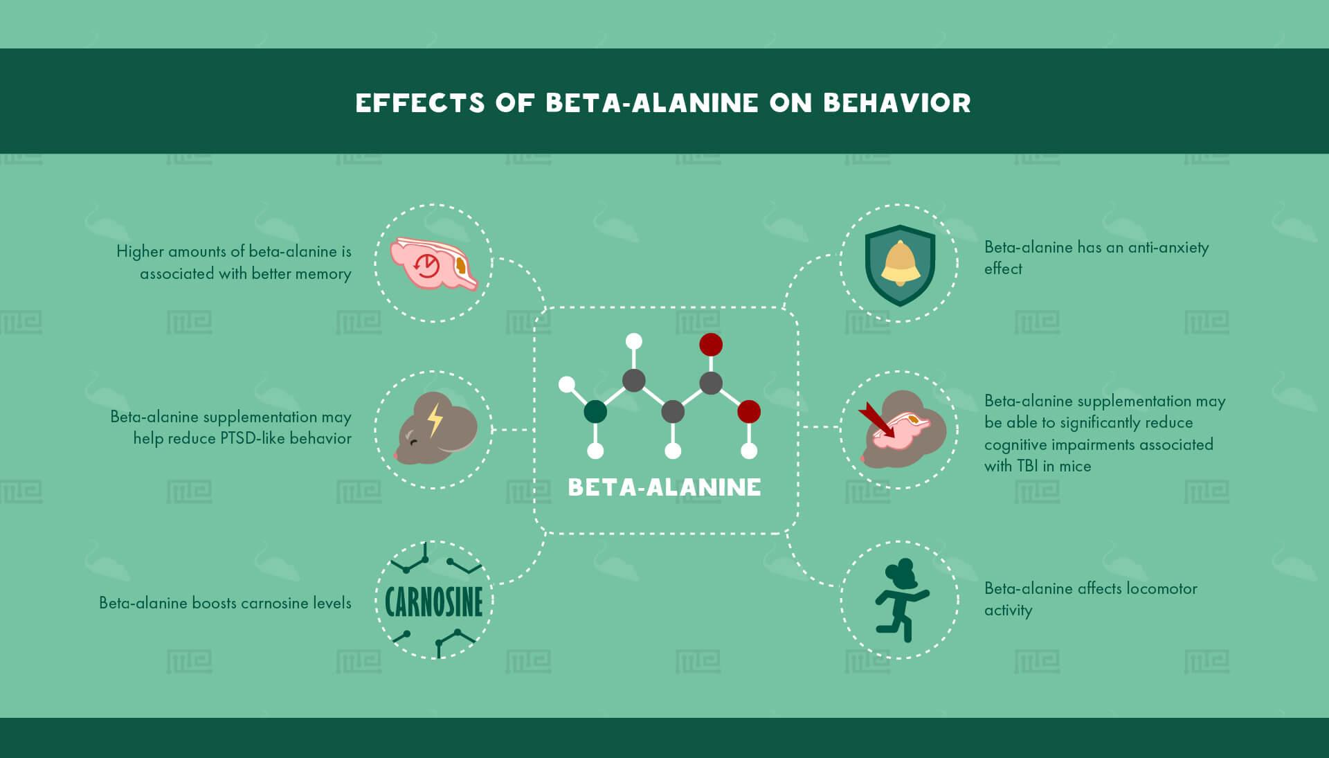1_Effects of Beta-Alanine on Behavior