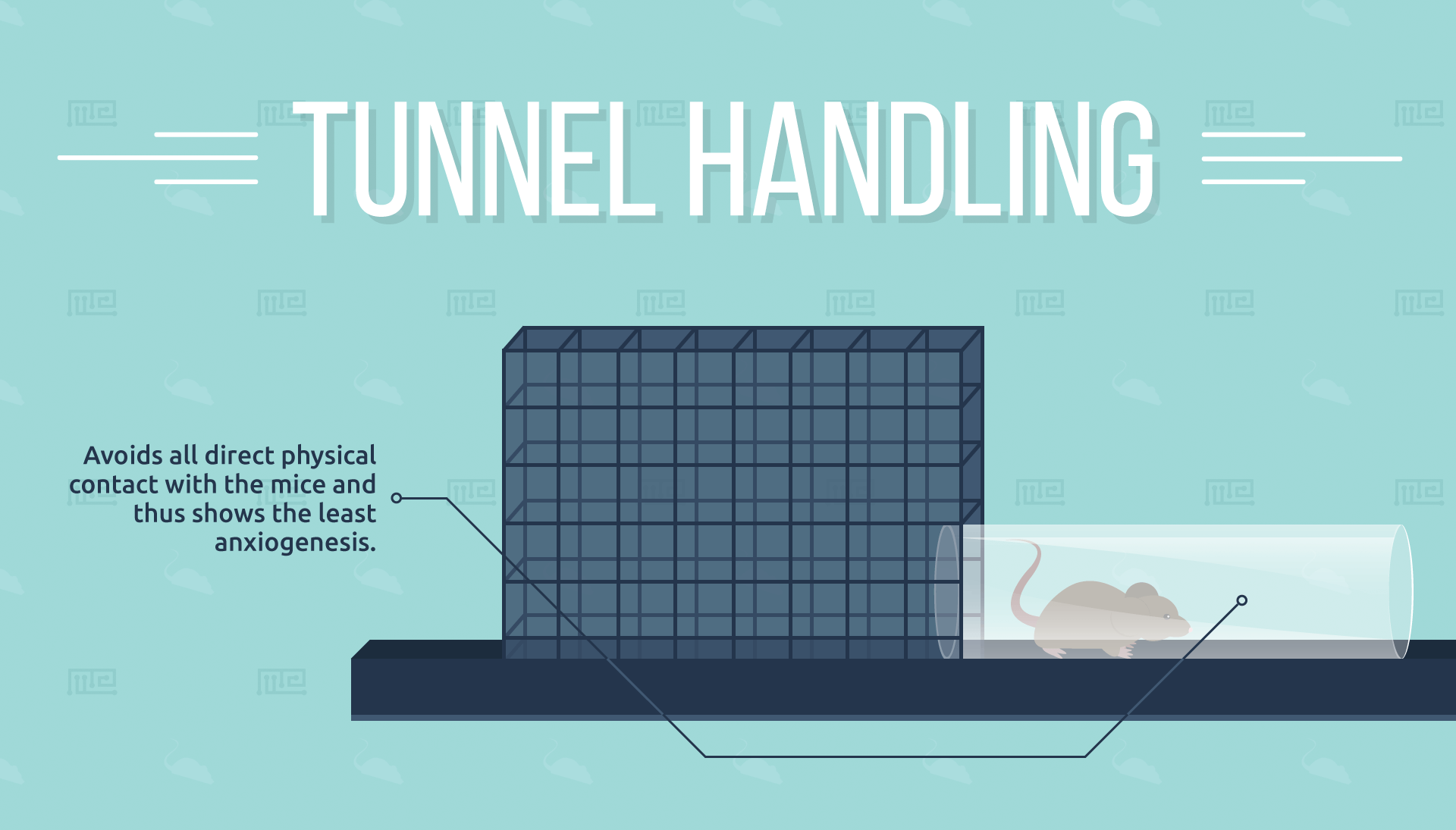 Tunnel-Handling