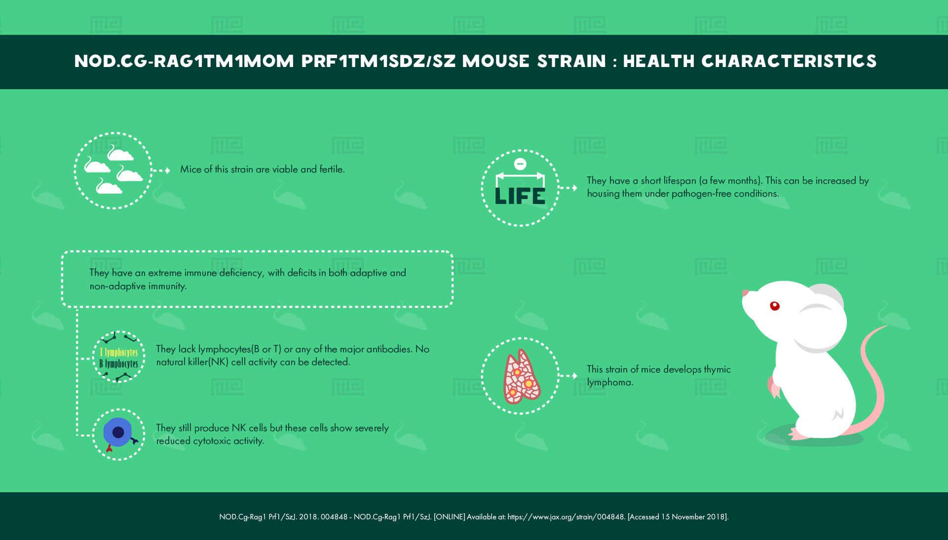 NOD.Cg-Rag1tm1Mom Prf1tm1Sdz Sz Mouse Strain - health Characteristics