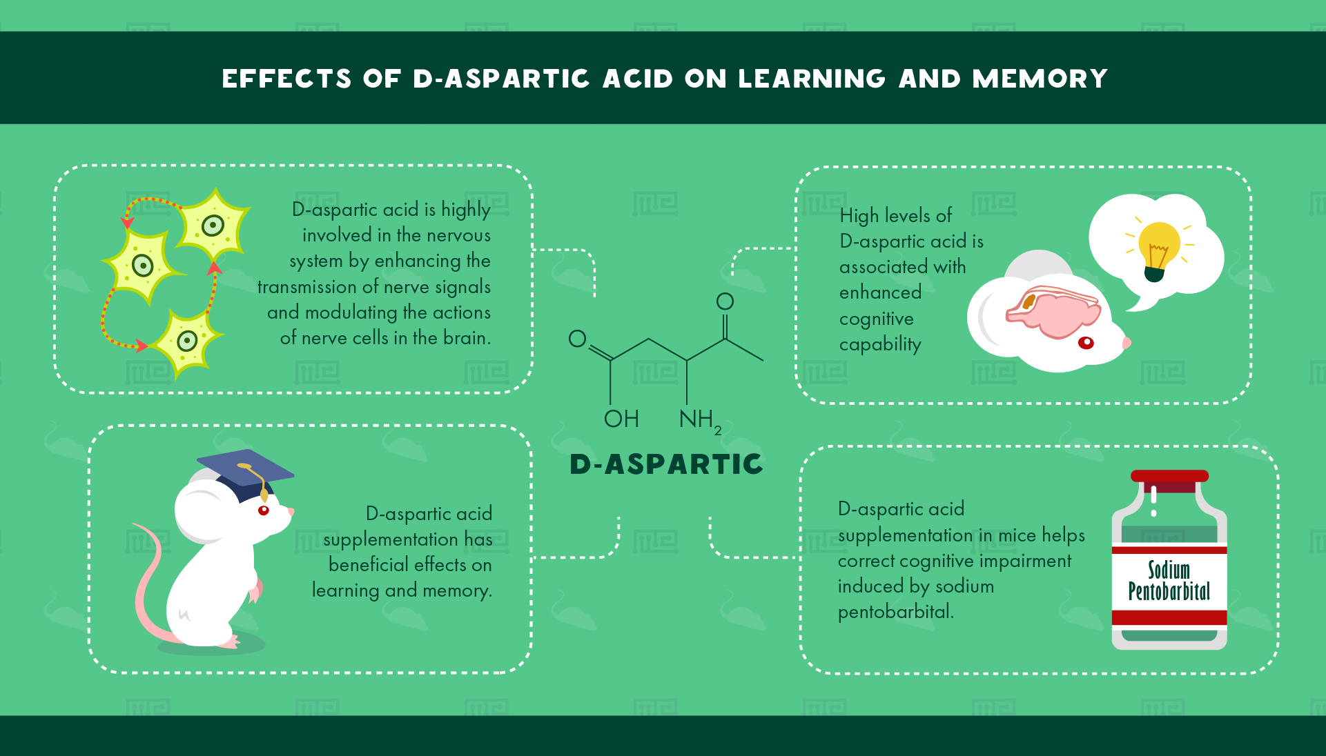 Effects of D-Aspartic Acid on Learning and Memory
