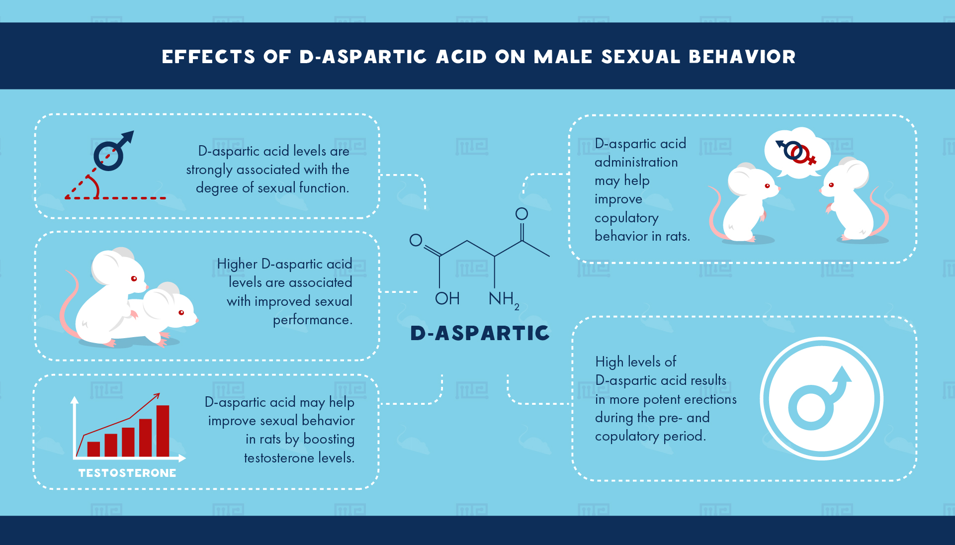 Effects of D-Aspartic Acid on Male Sexual Behavior