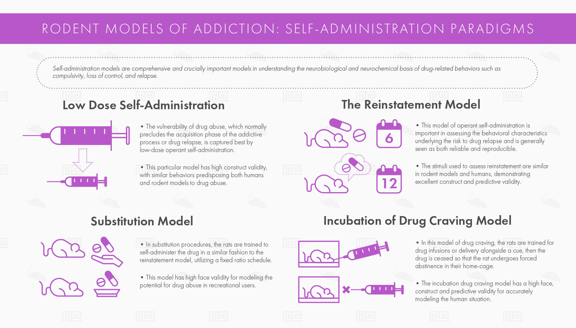 rodent models of addiction