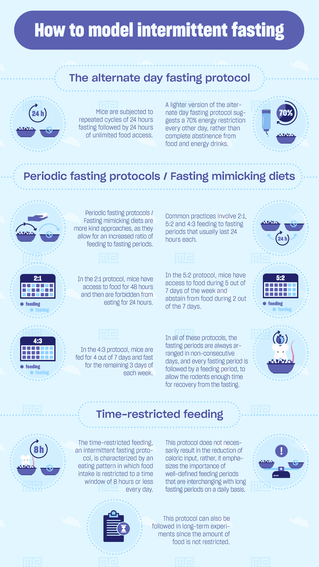 how to model intermittent fasting