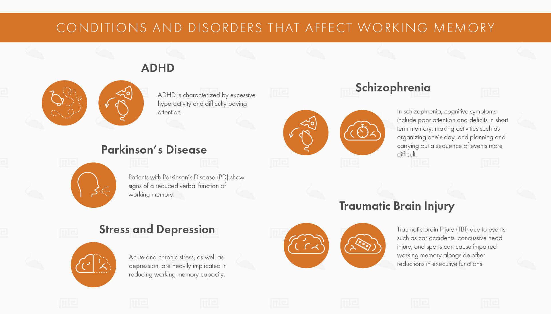 Conditions and Disorders that Affect Working Memory