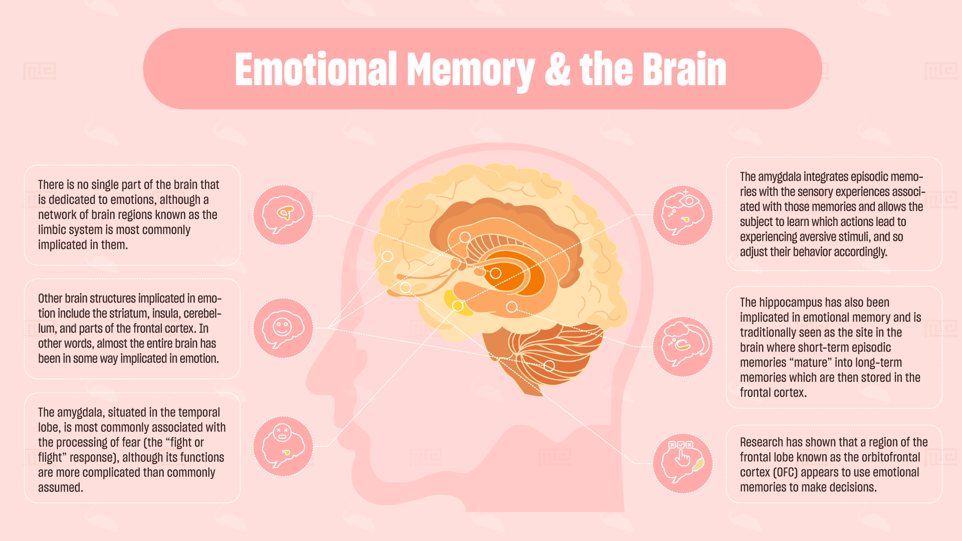 emotional memory and the brain