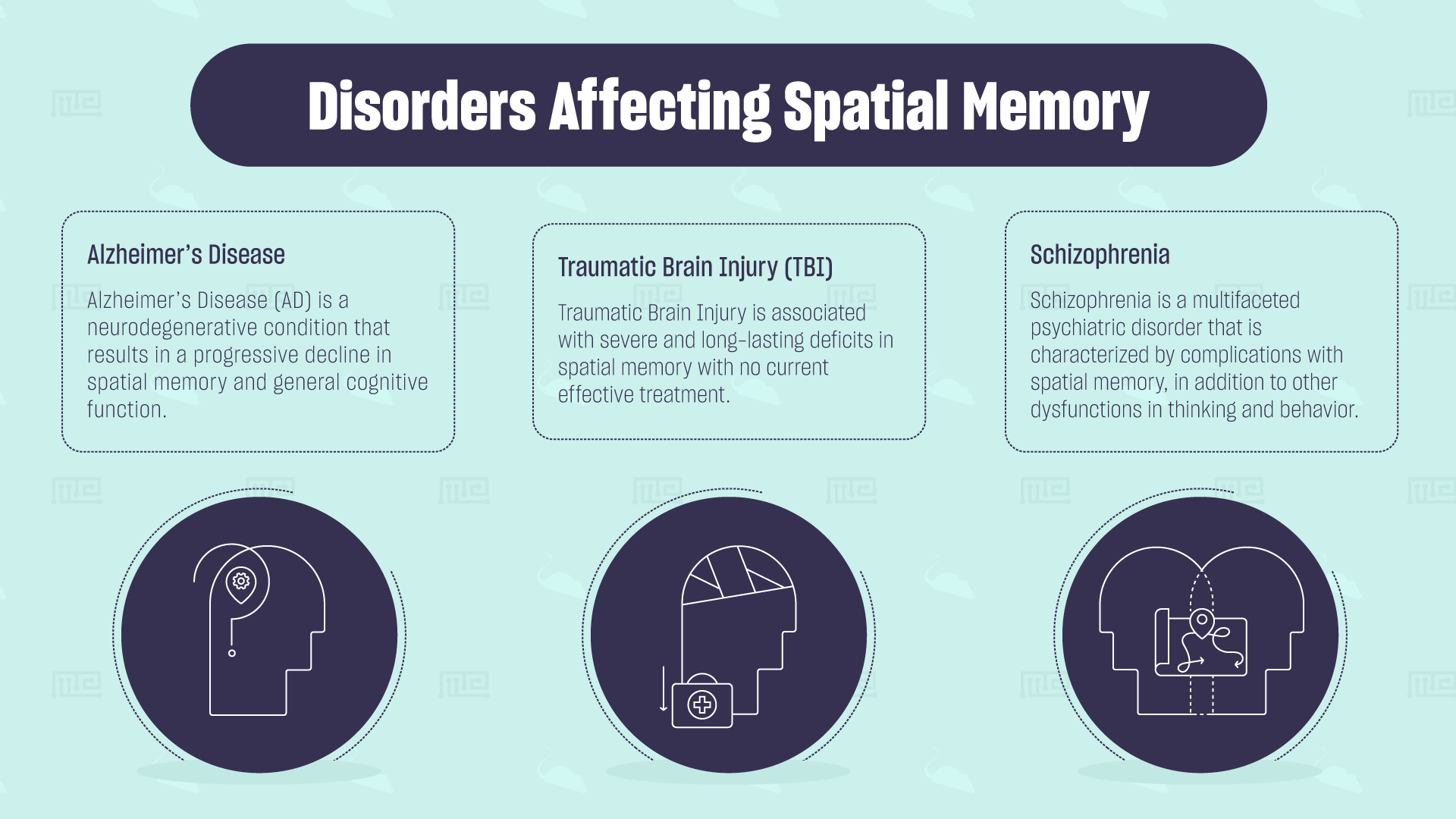Disorders Affecting Spatial Memory