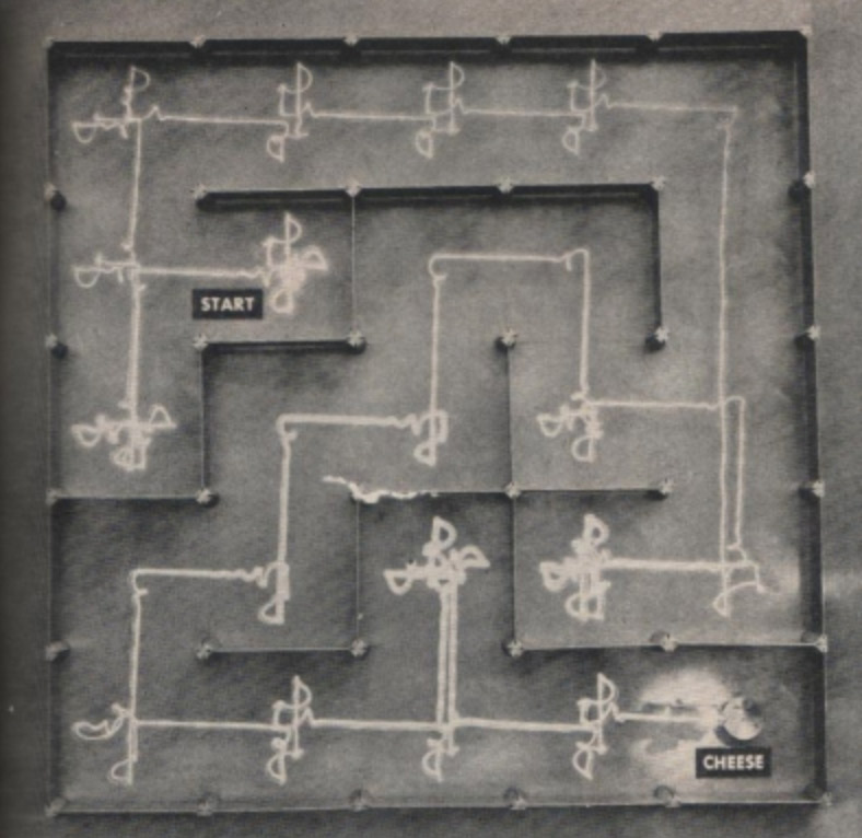 Theseus exploring a maze in history of mazes