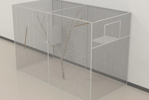 Zebrafinch_testing_cage_01_3